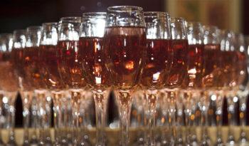 La copa perfecta para cada tipo de vino