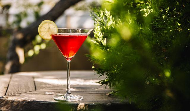 Aprende a preparar el cóctel más elegante